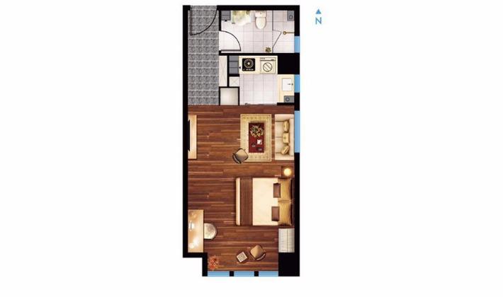 B1户型61平米1室