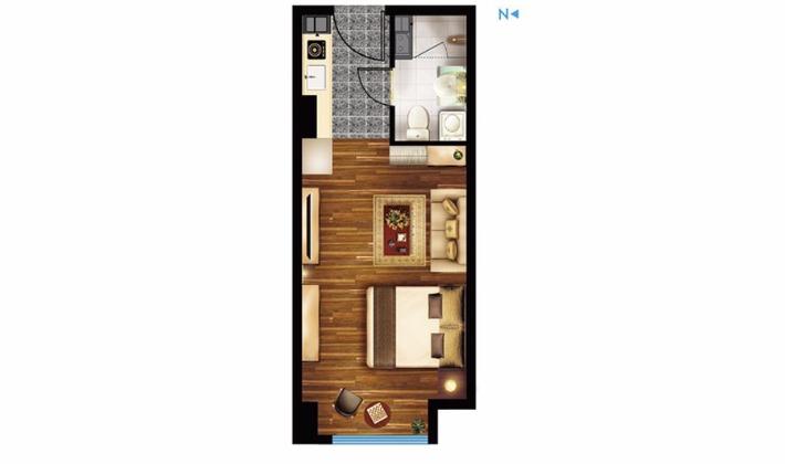 E1户型41平米1室