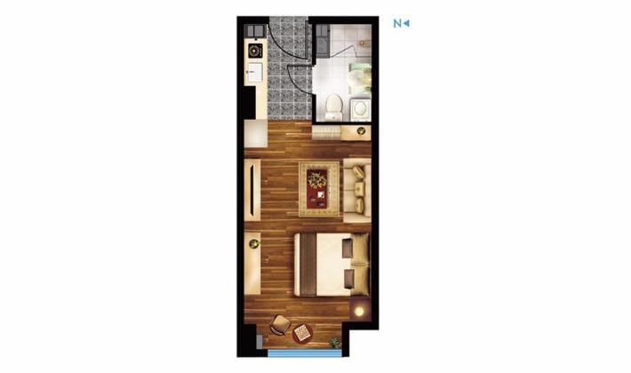 E2户型41平米1室