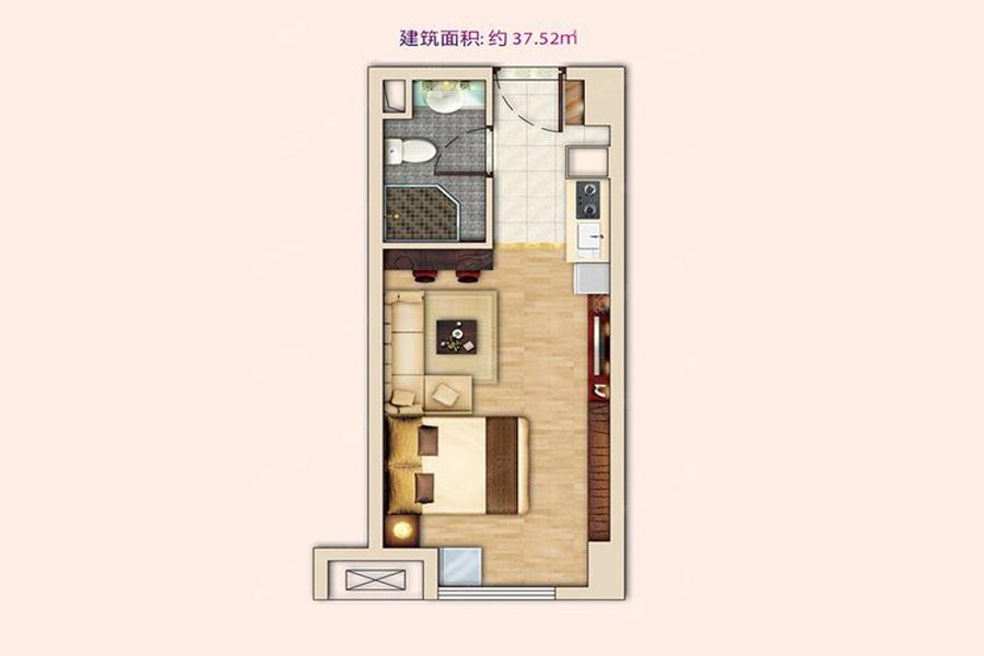 公寓5#C户型37平米1室1厅1卫1厨