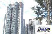 http://img2019.jnhouse.com/upfile/borough/picture/20151119110119.jpg/216x164.jpg