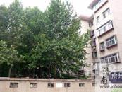 齐鲁工业大学教工宿舍